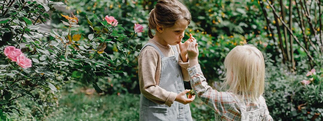Zlepšují stravování dětí. Cenu mentorů získala Skutečně zdravá škola